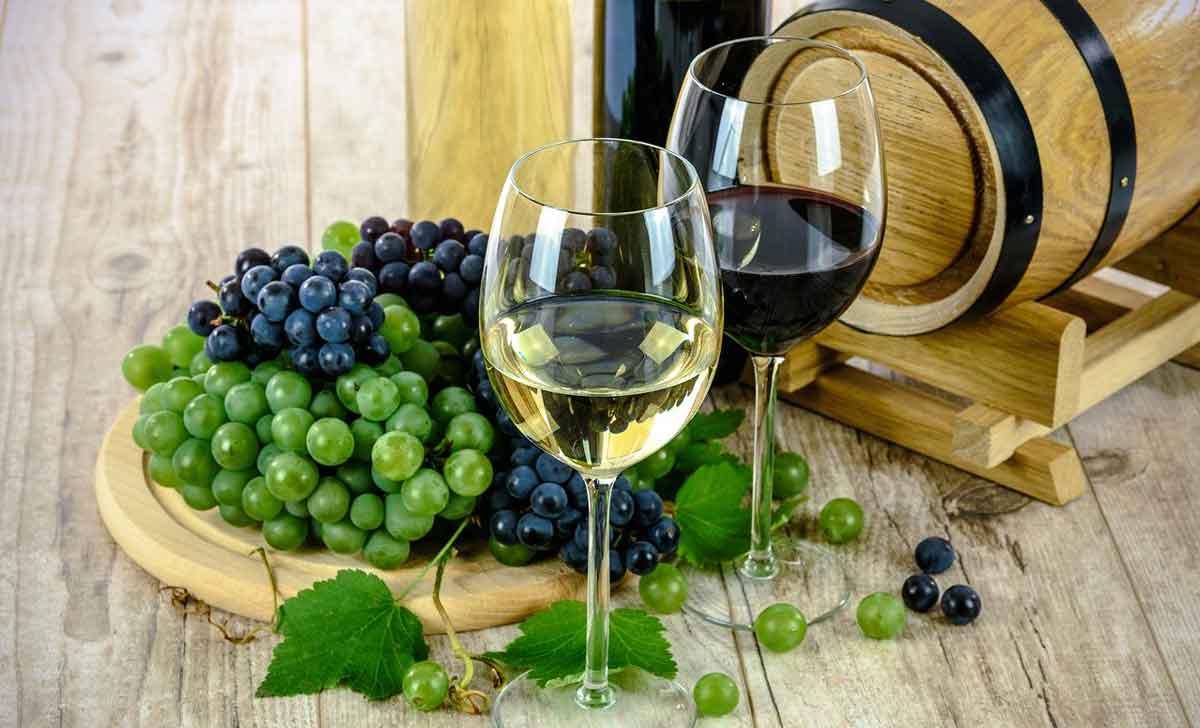 biologische wijn zonder sulfiet
