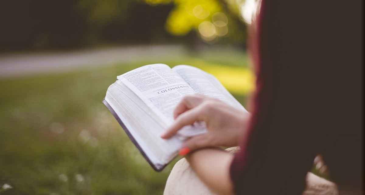 boek lezen in de natuur