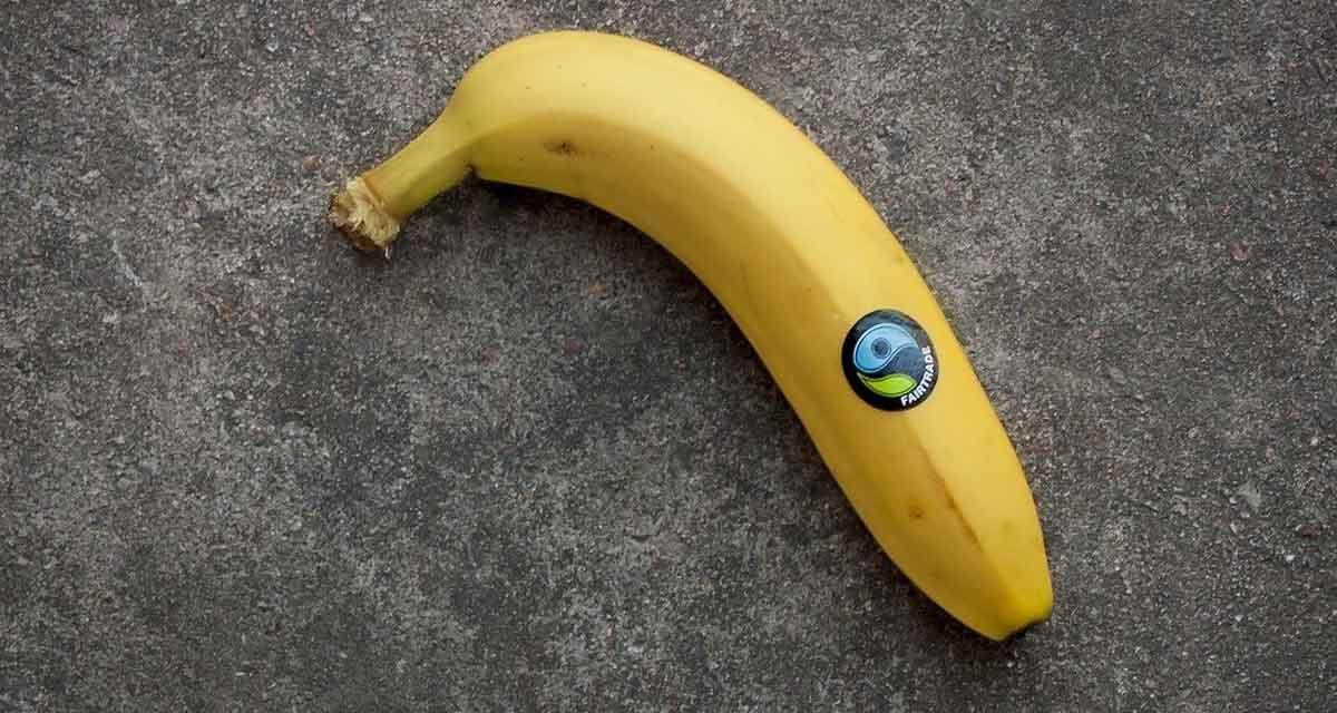 fairtrade banaan
