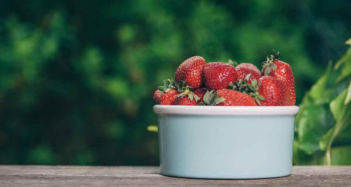 biologische aardbeien uit Nederland